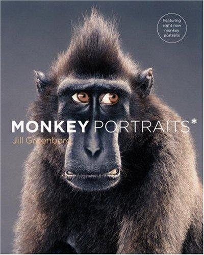 Download Monkey Portraits