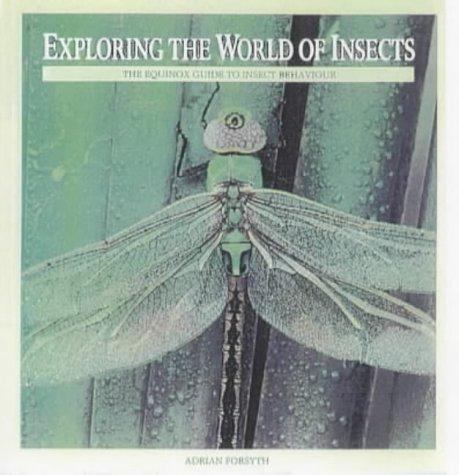 Exploring the World of Insects