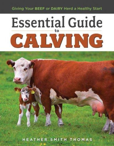 Download Essential Guide to Calving