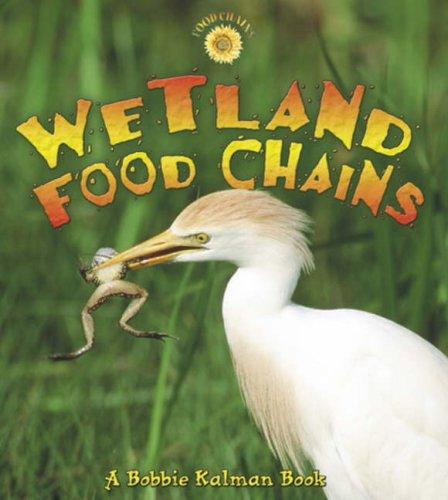 Download Wetland Food Chains