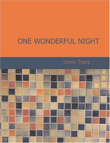 One Wonderful Night (Large Print Edition)
