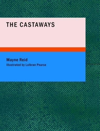 The Castaways (Large Print Edition)