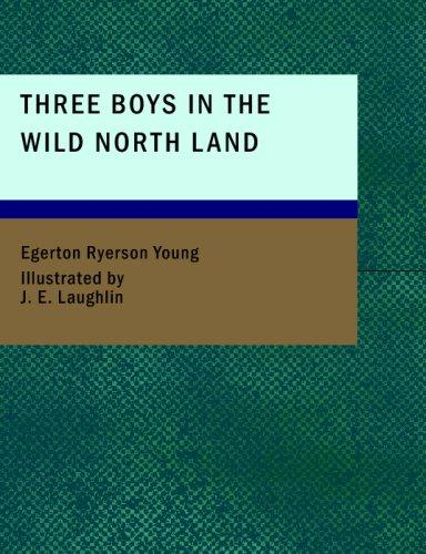 Three Boys in the Wild North Land (Large Print Edition)