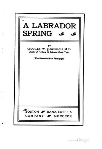 Download A Labrador spring