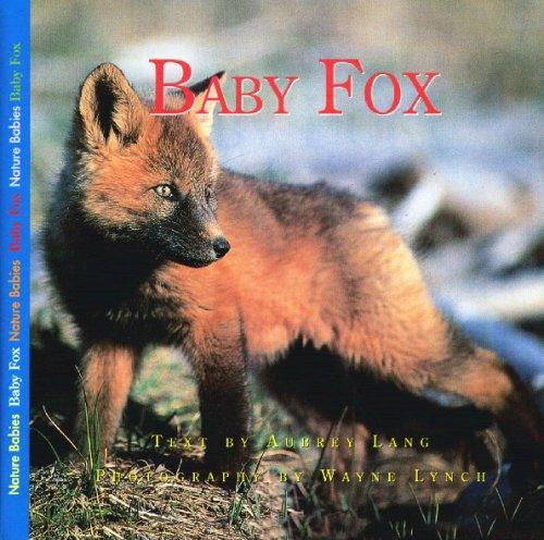 Download Baby Fox (Nature Babies)