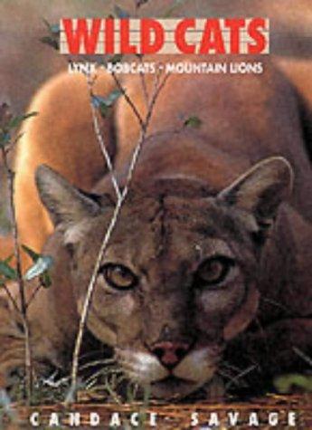 Download Wild Cats
