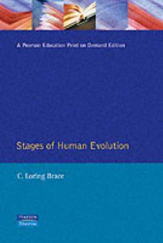 Download The stages of human evolution