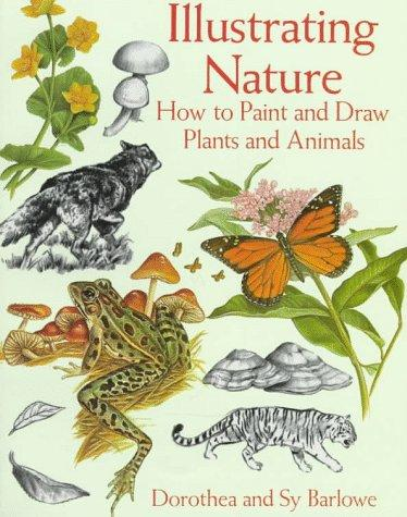 Download Illustrating nature