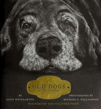 Cover of: Old Dogs | Gene Weingarten