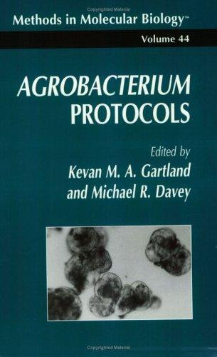 Agrobacterium protocols by