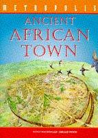 Ancient African Town (Metropolis) by Fiona MacDonald
