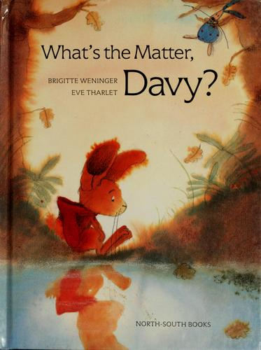 What's the matter, Davy? by Brigitte Weninger