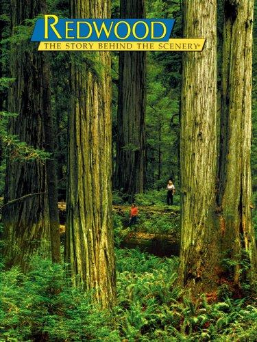Redwood by Richard A. Rasp